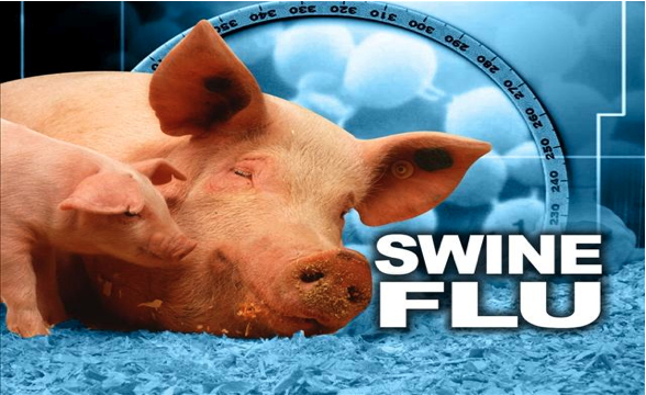 06swine_flu