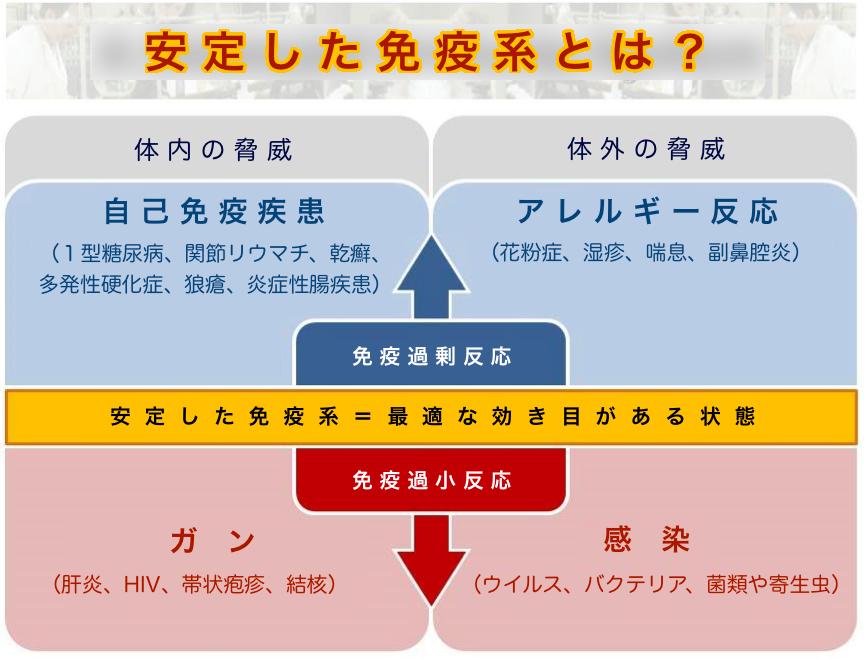 【図】安定した免疫系とは?