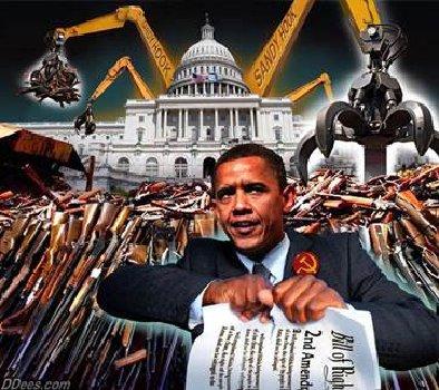 obama_guncontrol